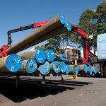 Koppers utility poles in transit